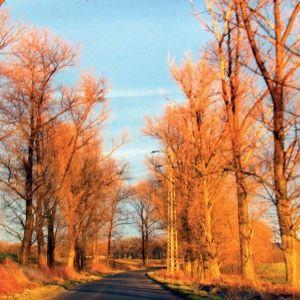 2/2019 Koloryt krajobrazu / Landscape Essence