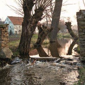 4/2012 - Woda - element kompozycyjny / Water - an Element of Composition