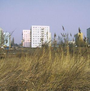 1-2/2002 - Miasto i strefa podmiejska / City and Suburban Zone